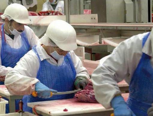 Zur Situation von Beschäftigten in Werkverträgen für die Fleischindustrie, Initiativkonferenz, 15.06.2019, Elmshorn