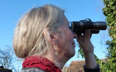 Ruhestand im Blick – Den Übergang aus dem Berufsleben gut vorbereiten und gestalten