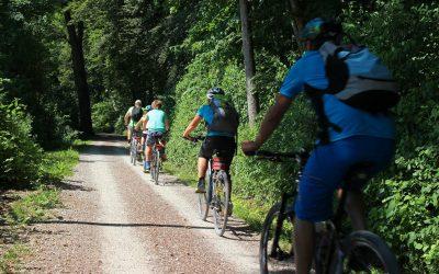 Fahrrad-Tour vomAktionsbündnis Wachstumswende Bremen (AWWB)