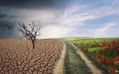 """Workshop: """"Wie geht gute Klimakommunikation?"""" mit Christian Gutsche"""